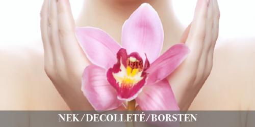 Nek/Decolleté/Borsten